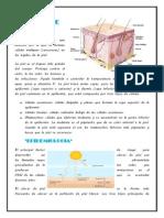 CÁNCER DE PIEL 11.docx