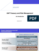 SAP Treasury and Risk Mgmt - Intro