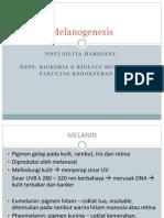 Melanogenesis