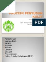 Protein Penyusun Kulit