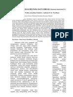 IDENTIFIKASI ALKALOID PADA DAUN SIRSAK (Annona muricata L.)