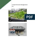 Kertas Kerja Cadangan Projek Pertanian Menggunakan Kaedah Hidroponik