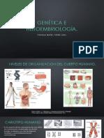 Alteraciones cromosómicas - Mantilla Ibañez.pptx