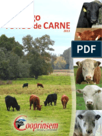Toros Carne 2013