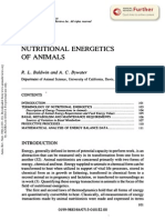 Nutritional Energetics of Animals