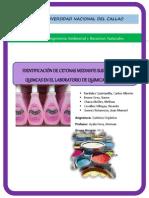 Informe 3 -Cetonas (Corregido)