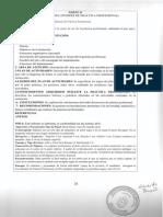 +1Estructura del Informe Final IPP