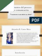 alejandra castro- procesos de comunicacin