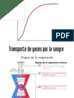 (2) Respiratorio Difusion y T de Gases Reg de La Respiracion