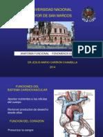 FISIOLOGIA CARDIOVASCULAR 2014II.ppt