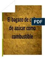Bagazo de Cana