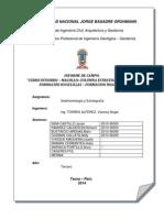 Informe de Sedimentologia