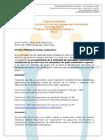 Guia de Actividades Trabajo Colaborativo 2 434207 2013-1i