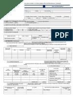 Ejemplo FormularioDeclaracionPatrimonial