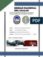 Contaminancion Marina en El Peru_Seguridad