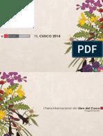 PDF QILLQA RAYMI 2014-I FIL CUSCO Programación Final