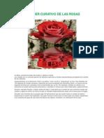 El Poder Curativo de Las Rosas