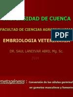 1.Embrio. Gametogénesis 1