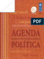 Agenda Politica CONAMI