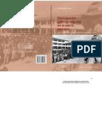 Participacion politica indigena