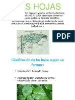 lidiacristina-121017152016-phpapp02 (2) - copia.pps