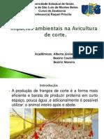 Impactos Ambientais Na Produção de Aves