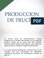 Produccion de Trucha