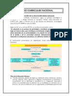 EL DCN.pdf