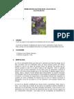 Informacion de cultivos en el valle del inca