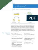 DS-VidyoGateway.pdf