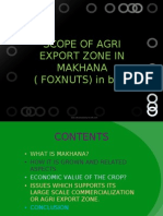 Makhana's Export Zone