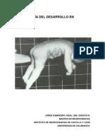 CINESIOLOGÍA.pdf