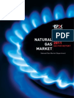 Natural Gas Market 2011 Sector Report