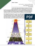 Apsa q7 Big Bang 2014 - 10