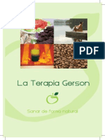 Folleto Terapia Gerson