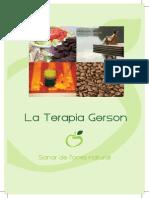 Folleto Terapia Gerson