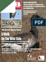 brent goose PDF.pdf