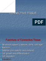 CONNECTIVE TISSUE.ppt