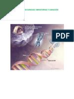 EL ADN, FRECUENCIAS VIBRATORIAS Y SANACIONES