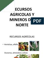 Recursos Agricolas y Mineros Del Norte