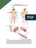 Resume Fisiologi Perekaman Otot Skeletal