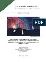 Delgado C. Microgénesis, Límite y Continuidad