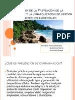 Programa de La Prevención de La Contaminación y