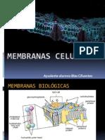 Membranas celulares