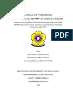 Cover Laporan Survey Puskesmas