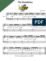 The Bumblebee Sixteen Notes