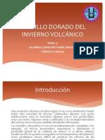 Brillo Dorado Del Invierno Volcanico
