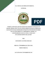 Informe Final-Pfs