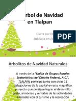 El Arbol de Navidad en Tlalpan