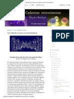 Cadencias Microcósmicas_ Los Nodos de La Luna y La Carta Dracónica